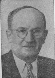 יהושע פישל שניאורסון