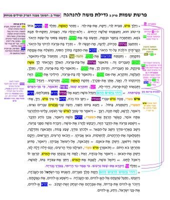 עמוד 74 לדוגמה מהספר