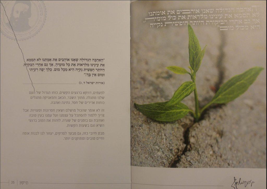 משפטי הרב קוק - דוגמה מהספר