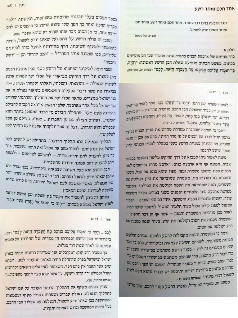 עמודי דוגמה מהספר